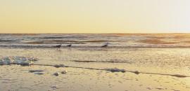 Settembre a Rimini…3 passi e sei in spiaggia